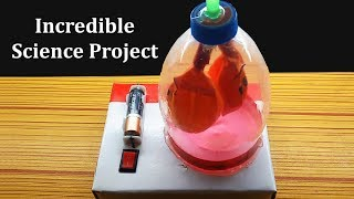 Wow! Incredible Project of Electric Lungs Working Model, Easy Science Fair Projects for you