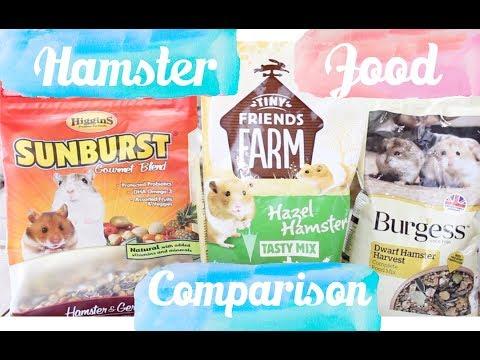 Hamster Food Comparison & Review Burgess, Higgins & Hazel Hamster | Hamster  Diet 2017