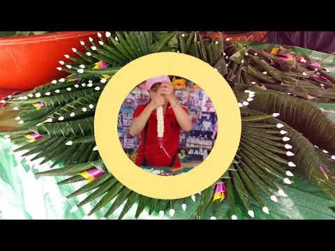PVA.THAILAND : PAK KLONG TALAD, the bigest flower market in Bangkok