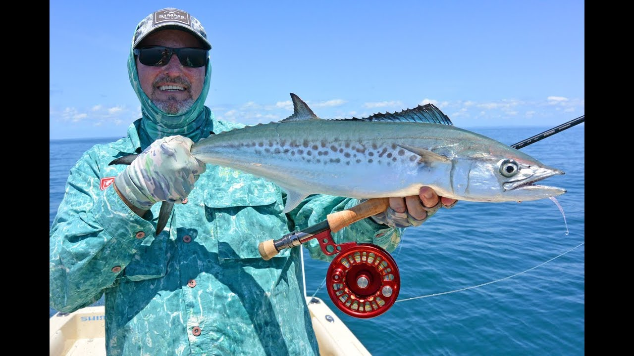 Fly Fishing Hervey Bay for Tuna & Spotted Mackerel