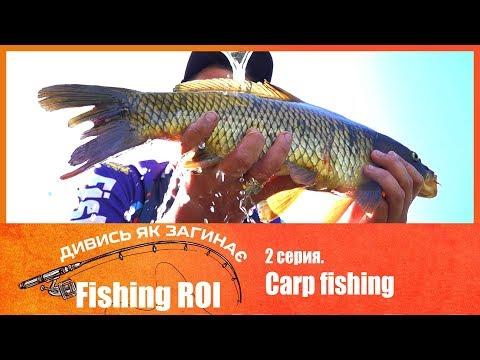 Смотри как загибает Fishing ROI. 2 серия. Carp Fishing