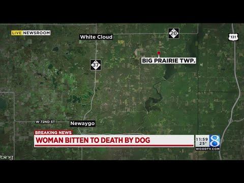 MSP: Newaygo County woman bitten to death by dog