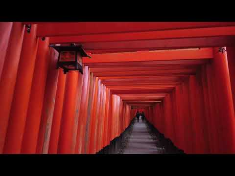 Kyoto Inari Shrine, Most Loved Visiting Spot by Foreign Tourists to Japan