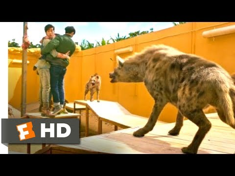 Kung Fu Yoga (2017) - The Hyena Pit Scene (7/10)   Movieclips