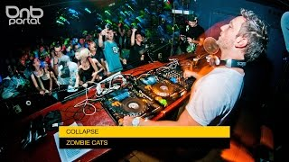 Zombie Cats - Collapse [DnBPortal.com]