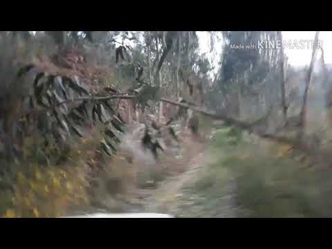 Passeio pelo Rio Paiva... de Alvarenga a Espiunca