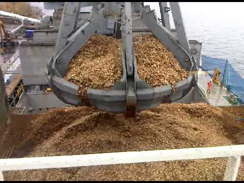 Wood Chip Carrier discharges wood chips by on-board cranes, hoppers and conveyor system