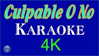 CULPABLE O NO - KARAOKE - 4k