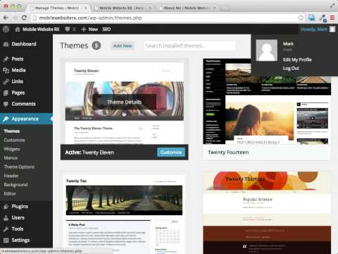 Working with WordPress Themes