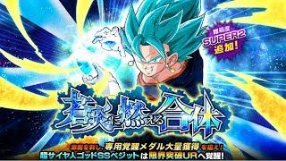 SUPER SAIYAN BLUE VEGITO NEW BOSS STAGE SUPER2 NO ITEMS & STONES | DBZ Dokkan Battle