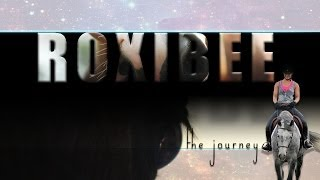 Roxibee - The Journey