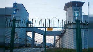 Doğu Türkistan'da toplama kamplarını gezen gazeteci Uygur Türkleri'nin durumunu euronews'e anlattı