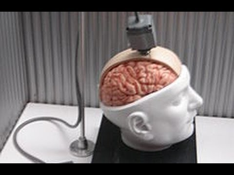 The Internet Wired Directly Into Your Brain:  Neural Interfaces