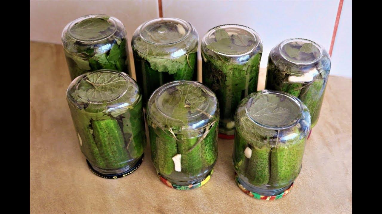 marinuoti agurkai riebalų nuostoliai