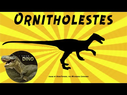 Ornitholestes: Dinosaur of the Day
