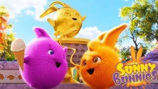 Sunny Bunnies GOLDEN CHAMPION | Cartoons For Children | Funny Cartoons For Children