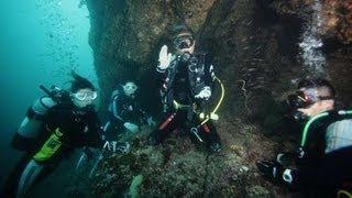 出雲の「海底遺跡」がダイバーたちに人気