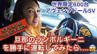 旦那の6000万円のランボルギーニを勝手に運転してみたら....[アヴェンタドールSV]気になるランボルギーニのオプションの値段?!