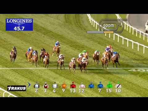 Race 5  Nad Al Sheba Turf Sprint Sponsored by Arabian Adventures
