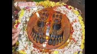 Download Hindi Video Songs - seshashailavasa sri venkatesa ( srivenkateswara mahatyam ) karaoke with