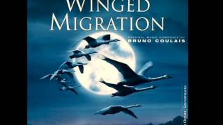 Robert Wyatt - The Highest Gander (Winged Migration OST)