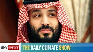Saudi Arabia joins countries with net zero targets