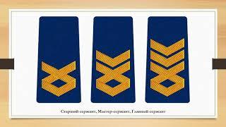 Знаки различия армии Грузии