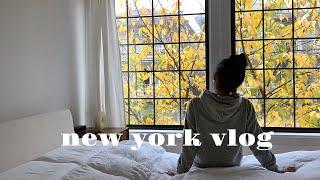 [NY vlog]뉴욕 직장인 일상 | 칠링타임 at B…