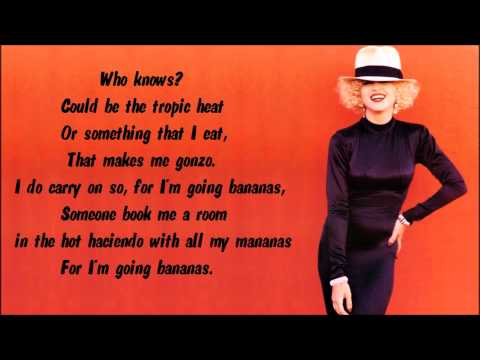 Madonna fever lyrics