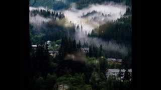 Indian Bamboo Flute Natural sounds - Relaxation music