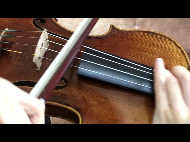 Ifstrings Master Build deluxe wood #344 Guarneri del Gesu 1743