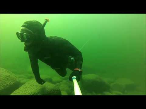 Подводная охота на калкана и камбалу Балтийское море, 04/05/2013
