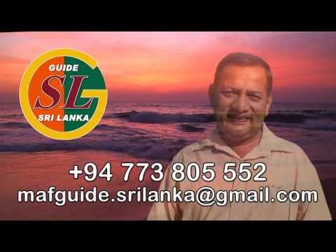 Driver guide Sri Lanka, travel Sri-Lanka, discover srilanka tourism
