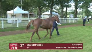 The Chaser Day Paray - 2016 - Lot 27 : Escort'Eden