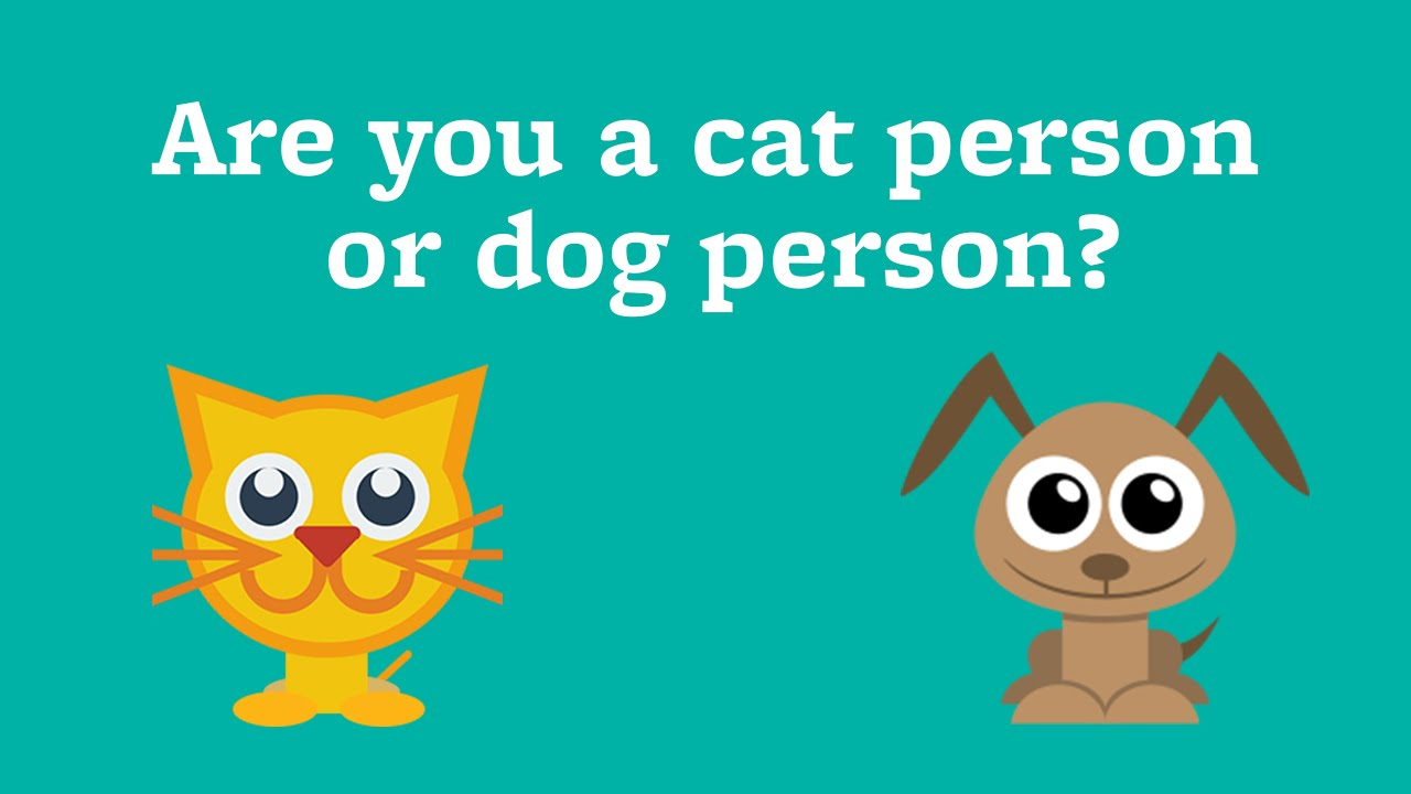 Are you a cat person or dog person? - YouTube