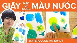 WATERCOLOR PAPER 101 | Giấy nào vẽ được màu nước?