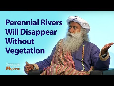 Perennial Rivers Will Disappear Without Vegetation