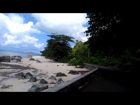 Seychelles Praslin Sea Side n Nature