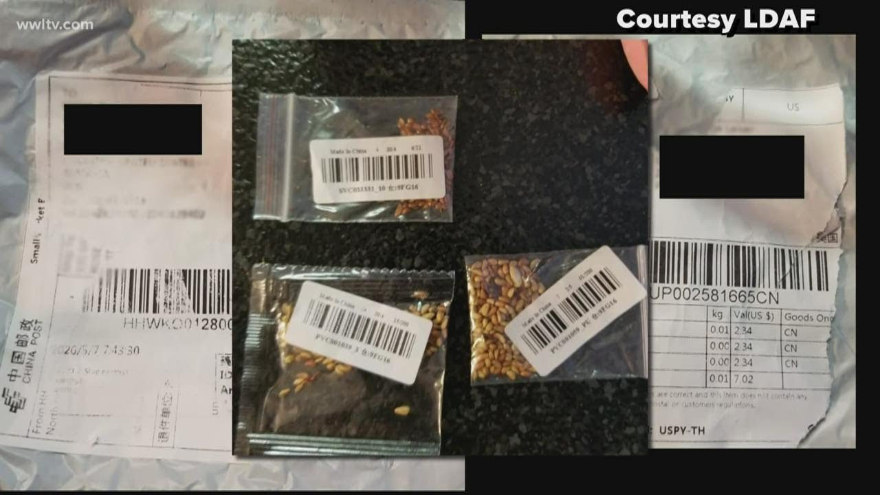 Mysterious Seeds From China Mailed to People Across the U.S.