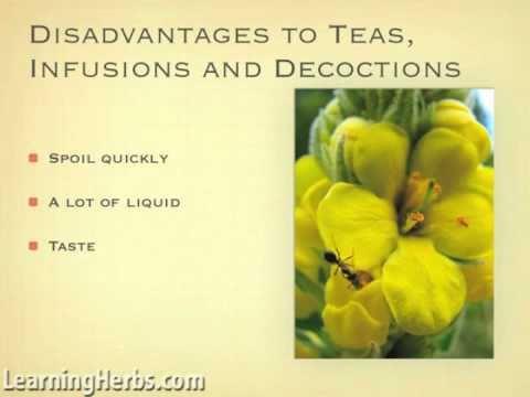 Choosing Herbal Preparations Part 1
