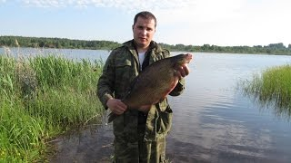 платная рыбалка в романцево