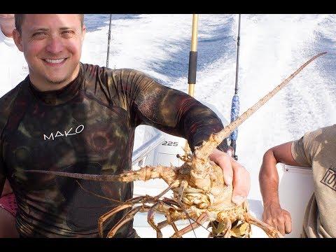 south-carolina-lobster-&-octopus