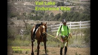 vail lake endurance ride 2014