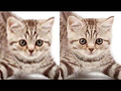 cara-memperbesar-resolusi-foto-di-photoshop-agar-tidak-pecah