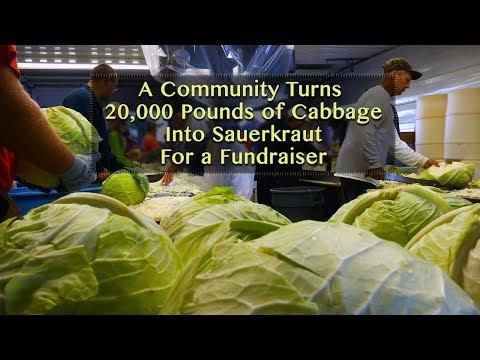 Verboort Sausage Dinner- Turning 20,000 Pounds of Cabbage Into 50 Barrels of Sauerkraut