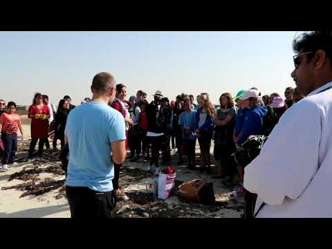 Buhay OFW : Al Zubarah Fort Discovery and Clean Up