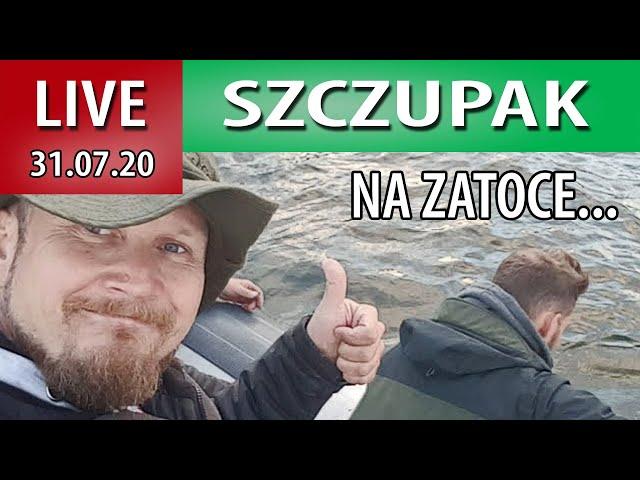 Live Zarybianie Szczupakiem ZATOKI PUCKIEJ