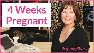 """4 Weeks Pregnant"" by PregnancyChat.com @PregChat"
