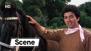 Sunny Deol Control The Horse   Amrita Singh   Betaab   Blockbuster Romantic Movie