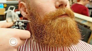 Dense Ginger Beard Trim